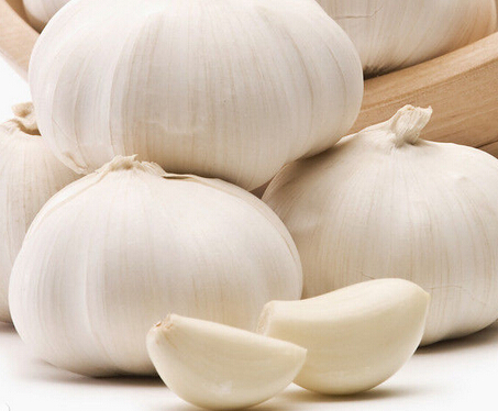 大蒜对健康的4大功效与作用 文章